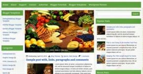 Diet Blogger Theme Template
